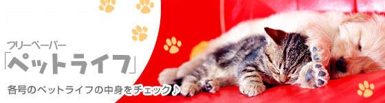 アナタも、かわいい我が子の写真を載せてみませんか?ペットの写真大募集!「Pet Photo」
