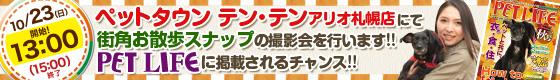 ペットタウン テン・テン アリオ札幌店にて街角お散歩SNAPの撮影を行います!