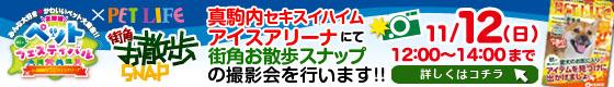 真駒内セキスイハイムアイスアリーナにて街角お散歩スナップの撮影会を行います!!