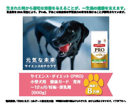 サイエンス・ダイエット〈PRO〉小型犬用 健康ガード 発育 ~12ヵ月/妊娠・授乳期