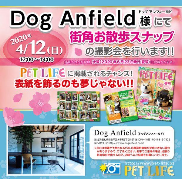 Dog Anfield様にて街角お散歩スナップの撮影会を行います!!
